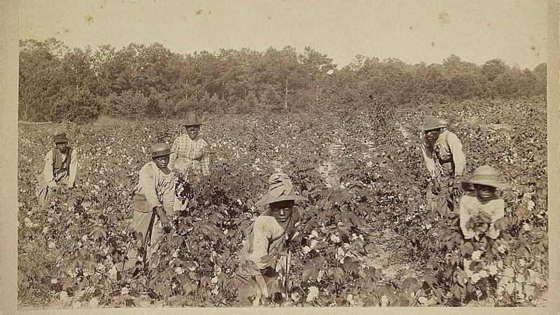 Slavery in Savannah Lauri Lyons