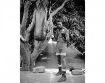 Lauri-Lyons-Bamako-Boxer